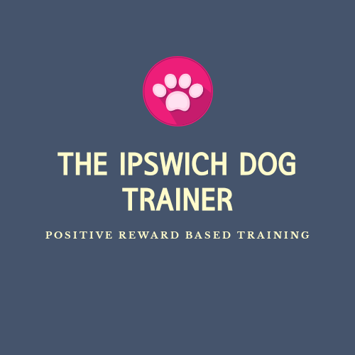 THE IPSWICH DOG TRAINER